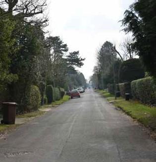 Chaldon Common Road
